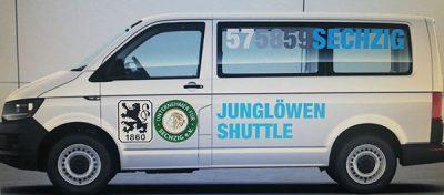 Junglöwen-Shuttle